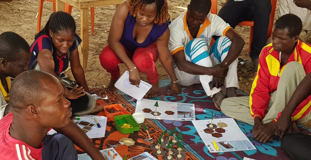 Enjeux de durabilité de la culture d'igname en Afrique de l'Ouest – Burkina Faso, Côte d'Ivoire